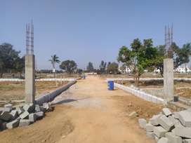 ^For sale at Vijayawada HWY,Jaipur # Plot-200 Sqyrd ₹ 19.99Lacs *^