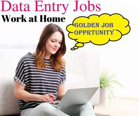 DATA ENTRY PART TIME SIMPLE TYPING JOB