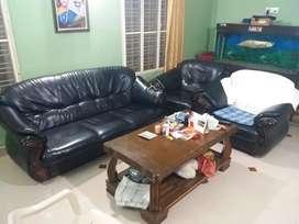 King size luxurious sofa