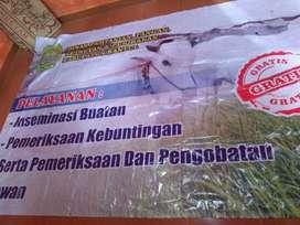 banner spanduk promosi usaha dll