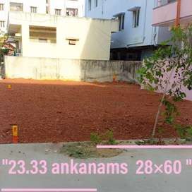 HURRY UP 23.33 ank plot with cement roads and ready to construct