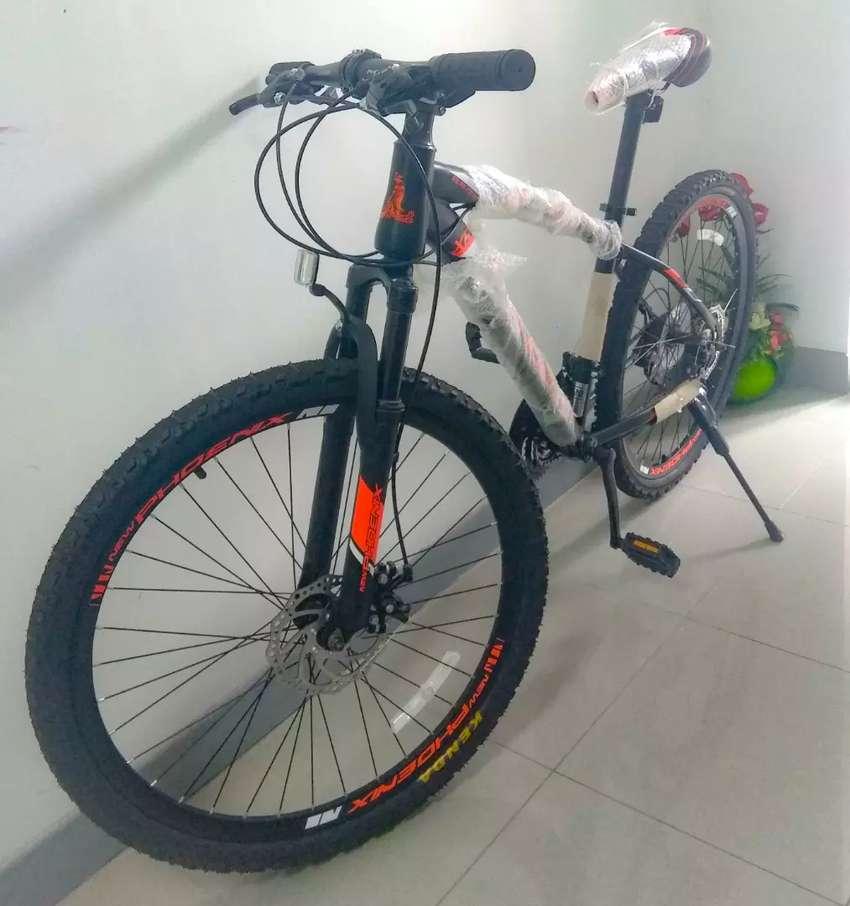 Sepeda gunung new 0