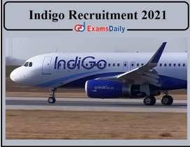 Job hiring for Driver/Supervisor/Ticketing Staff in Indigo