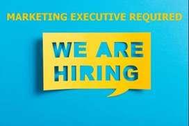 wanted credit card sales executive  in big bazaar