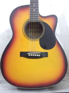 Harley Limited Edition Guitar