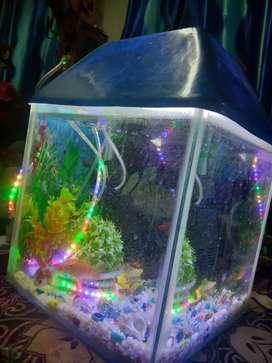 fish aquarium good condition