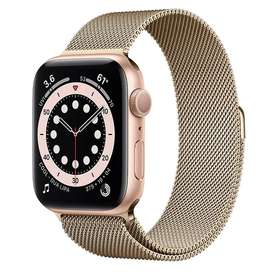 Apple Watch Series 6 44mm (Gold & Silver )  Stainless Steel Case