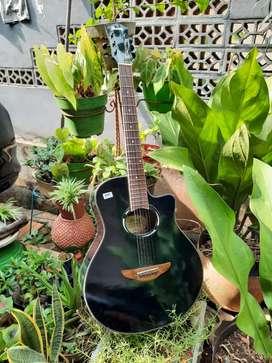 Gitar akustik sipruse glosyhitam