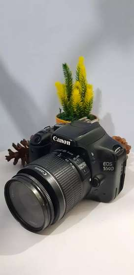 canon 550 d normal