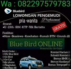 Dibutuhkan 10 Pengemudi / Driver taksi Bluebird