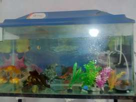 3 FIT FISH AQUARIM WITH STAND 3000RS.