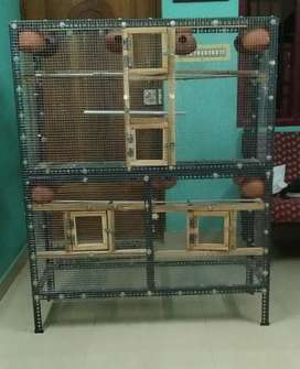 Love Birds Cage for sale