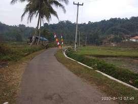 Tanah Sawah 3983 m2 Pinggir Jalan Dijual Murah di Serangpanjang Subang