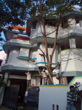 Well designed individual bunglow for rent