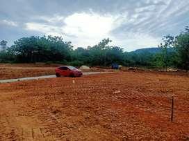 Tanah dijual pinggir jalan bonus pohon dan gazebo, jalan cor
