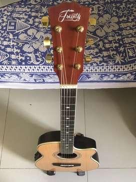 Trinity Semi-Acoustic Guitar