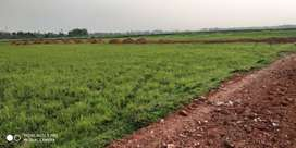 PLOT FOR SALE  price starting from Rs.250 /sq ft