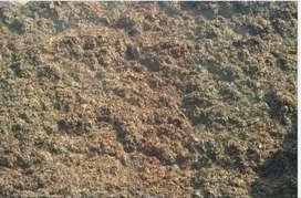 Button Mushroom Compost
