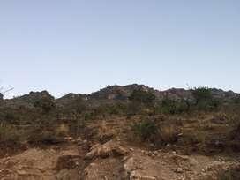 31 bigha land