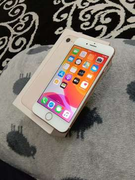iPhone 8  64 GB inter ory