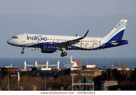 Hiring in Airlines job on roll Vacancy for full time  Qualifications a
