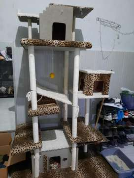 Pet Condo kucing
