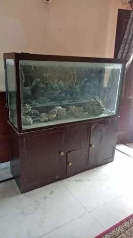 Aquarium 5'x5'x1.5'