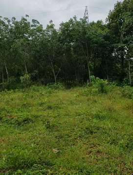 Plot for sale chry