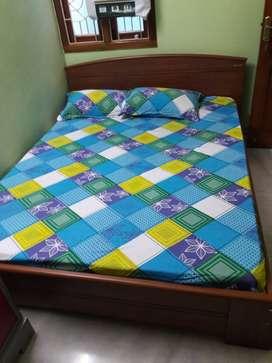 Zuari Queen Size Bed (Teak Finish, Brown)