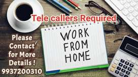 Work from Home as Telecallers