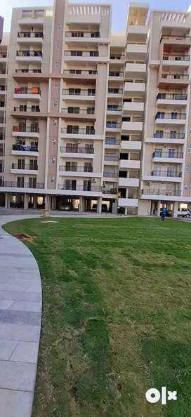 *Top location %797sqft 1BHK apartment/ at Dynasty