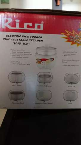 Rice cooker - electric
