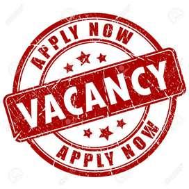 Need of marketing executive  both girls& boys can apply