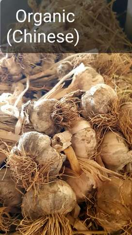 Organic garlic(Chinese)
