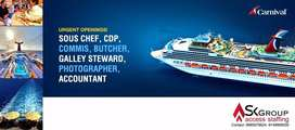 Career Opportunity in Cruise Line