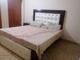 Room available for Male/Females as paying guest