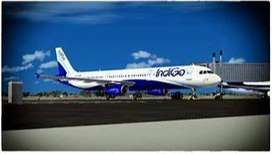 Huge Airport Ground Staff Job, Hiring In Indigo Airlines , Male And Fe