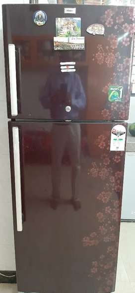 Working condition fridge Haier company
