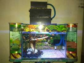 Aquarium full set 45x30x30 dan aquarium mini plus ikan