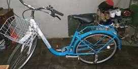 Sepeda Polygon Nevada