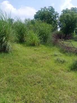 Residential plot near DPS Ramnagar road  Kashipur