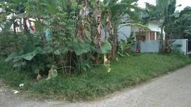 Tanah hook SHM hadap timur perkampungan cocok untuk bangun rumah