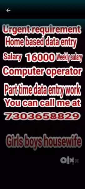 Data entry home based part time work girls boys