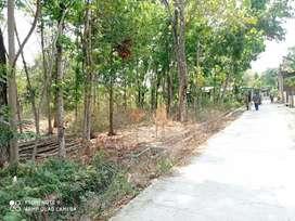 Tanah murah banaran banmati sukoharjo