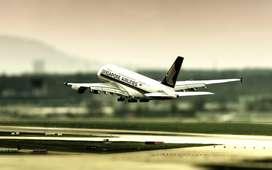 Ground / Airport Station Attendant. Aviation Meteorologist  Urgent hir