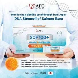 Jual Suplemen dari Ikan Salmon SOP100Plus