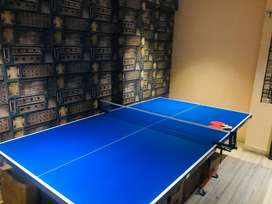 Table tennis Table Brand New