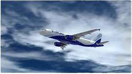JOB IN INDIGO AIRLINES APPLY FAST.