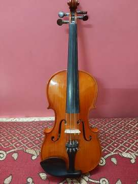 Learn violin biggener course six months