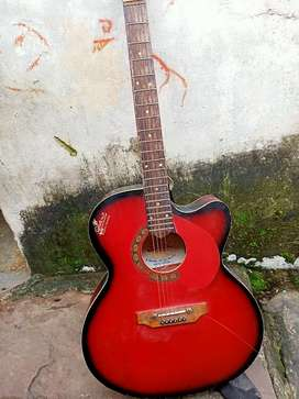 Signature guitar whit electronic